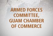 armed-forces-committee-gcc